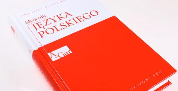 Онлайн-переводчик с русского на польский